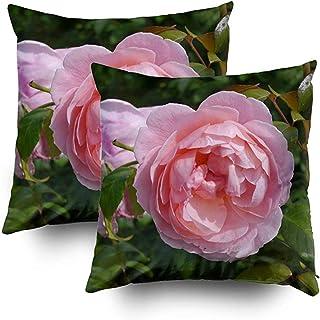 2PC 18X18,My Pillow Case,Throw Square Pillow Cover,Fundas De Cojines Flowering Pink Salmon English Ambos Lados Impresión Zipper Sets Funda De Almohada