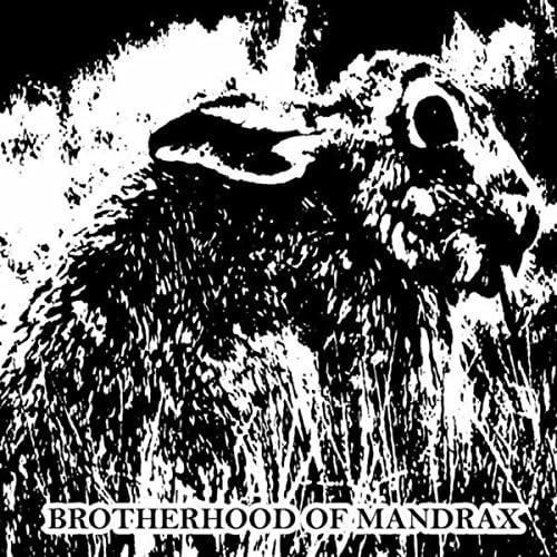 Brotherhood Of Mandrax