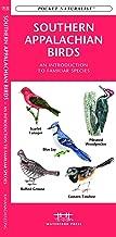 appalachian birds