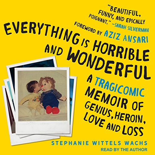 Everything Is Horrible and Wonderful audiobook cover art
