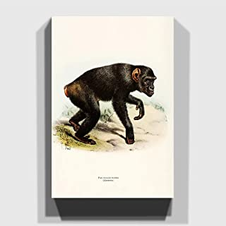 Big Box Art Canvas Print 20 x 14 Inch (50 x 35 cm) Vintage Smit, Joseph Kooloo Kamba, Wood Multi-Colour, 50 x 35 x 3 cm