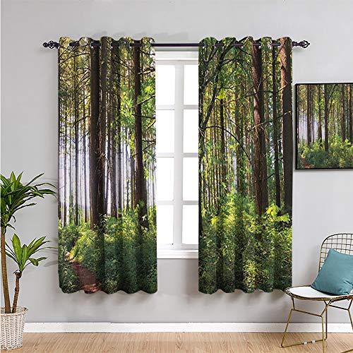 Pcglvie Cortinas para dormitorio, cortinas de 213 cm de largo en un bosque sombreado de arbustos y troncos gruesos, césped único paisaje salvaje, cortina de café verde marrón de 52 x 84 pulgadas