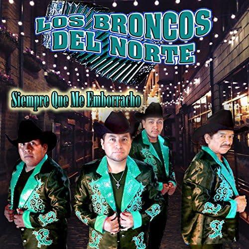 Los Broncos del Norte