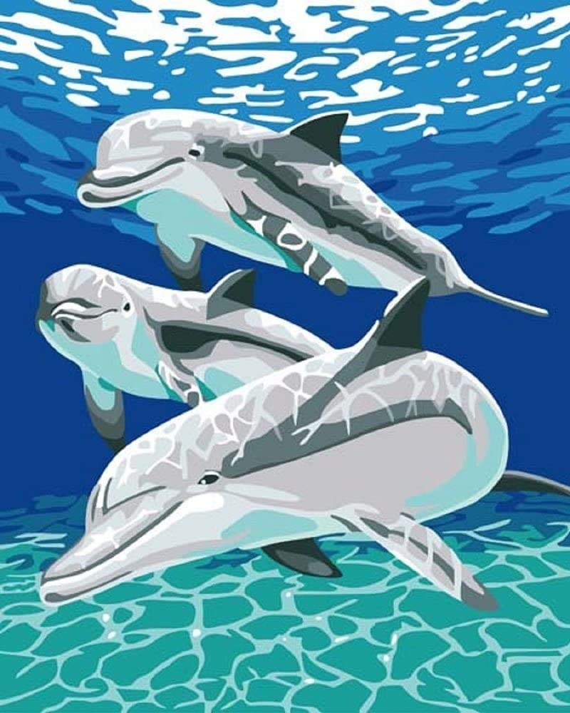 DIY Paint by Numbers Genuine Free Shipping Kit Adults for Super beauty product restock quality top! Dolphins Number -