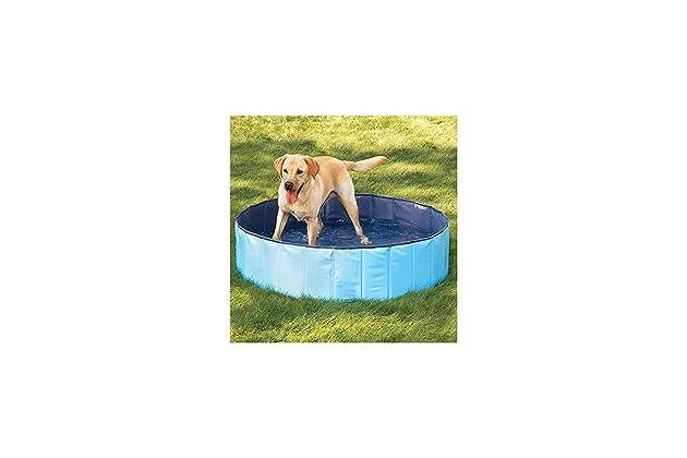 Amazoncom Furryfriends Medium Foldable Dog Pool 32x8 Folding