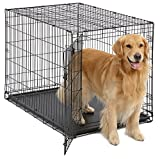 Large Dog Crate | MidWest iCrate Folding Metal Dog Crate | Divider Panel, Floor...