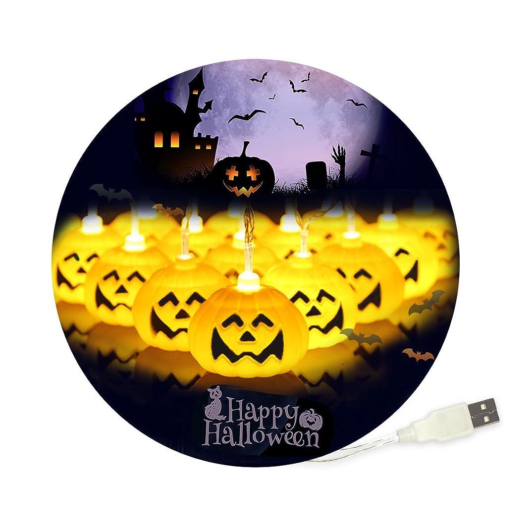 統合する達成無意識iitrust ハロウィン 飾り 30球 3m 省エネ LED かぼちゃ 2色選び可能 イエロー カラー USBタイプ イルミネーション ライト ハロウィン 飾り カボチャ ワイヤー ハロウィン照明飾り カボチャライト 電飾 パーティー ハロウィン 飾り iitrust正規代理品