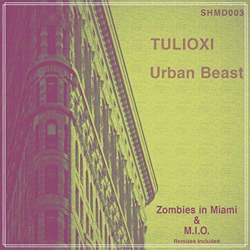 Tulioxi