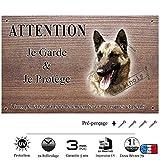 pets-easy.com - cartello deterrente intrusi (lingua francese), con immagine di cane di razza cane da pastore belga malinois (cod. 07) 20 x 10 cm