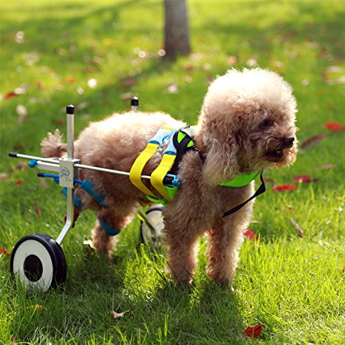 New! Two Wheels Adjustable Dog Wheelchair, cart, 7 Sizes for hind Legs Rehabilitation, 3D Soft Harness,Light Weight, Easy Assemble, Belly Band Specially for Spondylitis (2.New-XS)