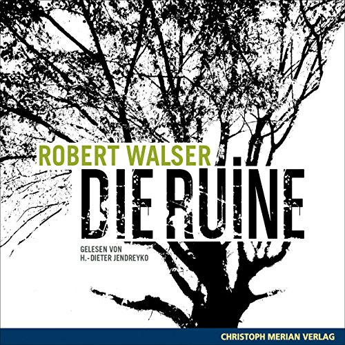 Die Ruine audiobook cover art