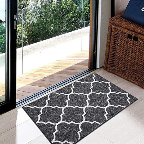 """Premium Durable Indoor Door Mat, Non Slip Absorbent Resist Dirt Entrance Rug, 20""""x32"""" Machine Washable Low-Profile Inside Floor Mat Area Rug for Entryway"""