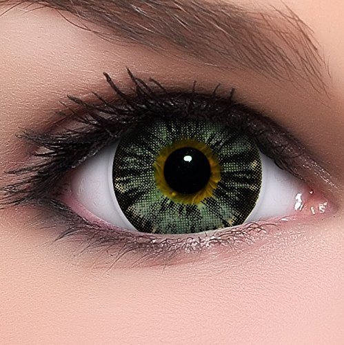Circle Lenses graue Nudy Grey ohne Stärke + Behälter I 15mm I weich I 3 Monate anwendbar