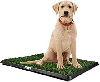 Home-Man Puppy Potty Trainer - Pets Indoor Restroom - Artificial Grass Pet Bathroom Mat for Pet Potty Training, 20
