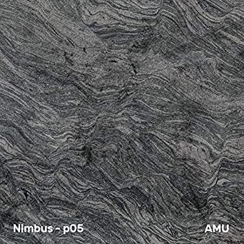 Nimbus-P05