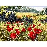 DIY Pintura por Números Pint por Número de Kits,Flor de Amapola,Lienzo Preimpreso Pintura al óleo Arte Decoración del Hogar Reducir la Ansiedad 40x50cm(Sin Marco )