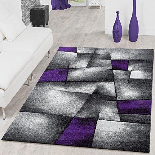 Alfombra moderna sala de estar alfombras Karo Lila gris Konturenschnitt LIQUIDACIÓN, 160 x 230 cm