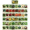 50-Pack Black Duck Brand Assorted Heirloom Vegetable Seeds