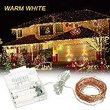 Bedler Luci a Corde 39ft 100 LED Rope Light 8 modalità Warm White Lights per la Decorazione del Garden Party Home Festival luci fatate