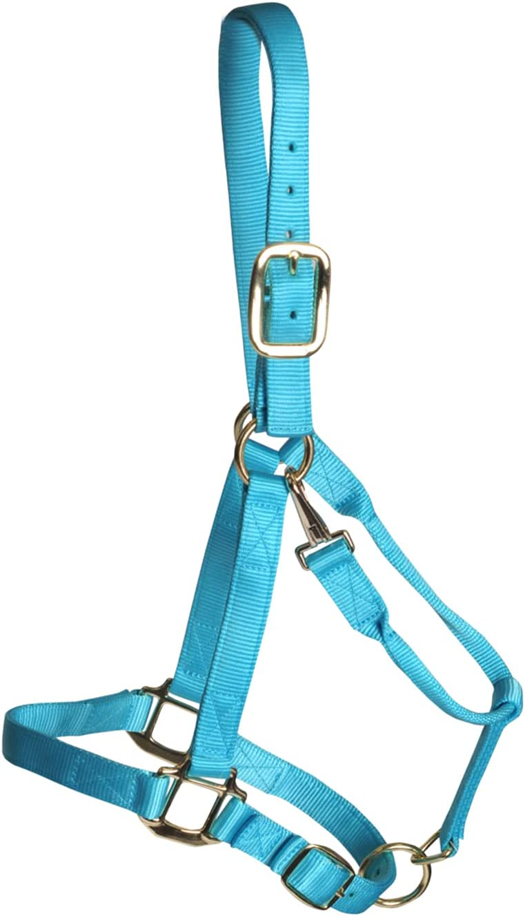 SHEDROW Horse OFFicial shop Halter Double Nylon w Chin Ranking TOP10 Crown Stra Adjustable