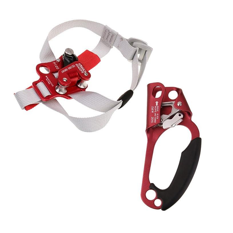 献身避難する信頼できるFityle 2個入り 屋外 洞窟探検 登山装備 ライザー フット ハンド アセンダ 右足アセンダ 右手アッセンダー 安全保護
