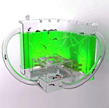 Ant Farm - Habitat Educational & Learning Science Kit Toy for Kids & Adults - Allows Study of Ecosystem, Behavior of Ants Within The 3D Maze, (Green)