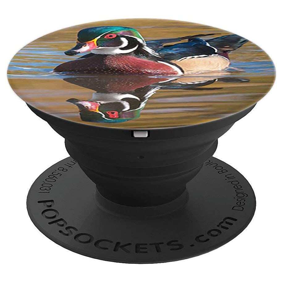 Wood Duck bird photo gift - PopSockets Grip and Stand for Phones and Tablets