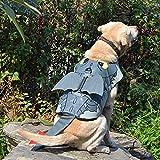 XIAOTAO Ropa para Mascotas Traje de baño para Perros Chaleco Salvavidas Ropa para Perros Mascotas Forma de diseño de tiburón Chaleco Seguro Plegable para Perros Regalo para Perros y Gatos-S