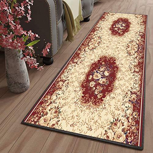 Amazmax Salon alfombras 50x250cm Grande Lavables Antideslizante Antiestática Baratas para Salón Comedor Dormitorio Pasillos Entrada Color9