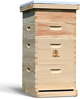 Amish Made in USA Complete Langstroth Bee Hive Includes Frames and Foundations (2 Deep, 2 Medium)
