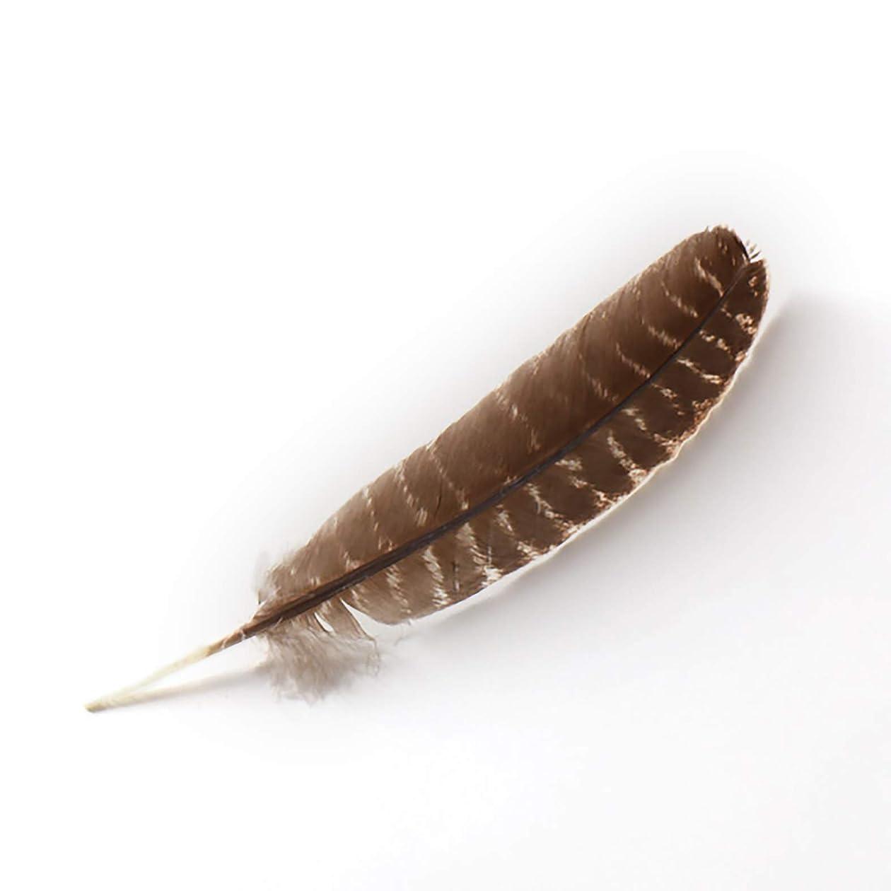 最初にぶら下がる休眠BODHI TREE ワイルドターキー 伝統的 スマッジフェザー 天然バーレッド (欠陥なし)