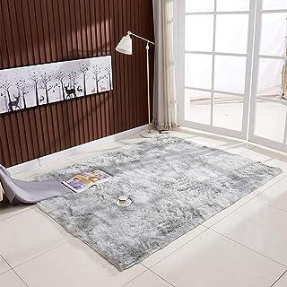 Ultra Soft Tie-Dye Style Gradient Color Carpet Floor Bedroom Mat Rectangle Shape Fluffy Rug for Living Room Bedroom Balcon...