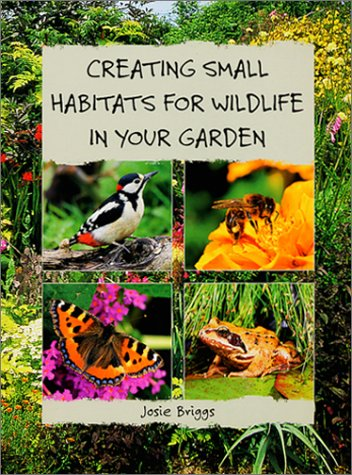 Creating Small Habitats for Wildlife in Your Garden