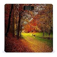 紅葉の森 LCDディスプレイ付き高精度スマートフィットネススケール体重デジタルバスルームボディスケール