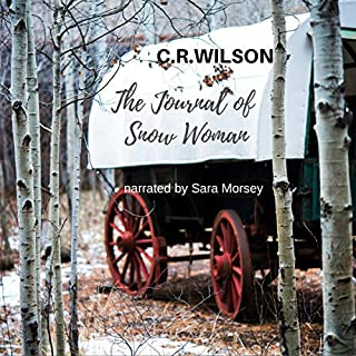 The Journal of Snow Woman audiobook cover art