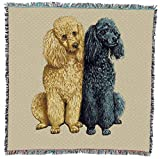 Poodles - Robert May - Lap Square Cotton Woven Blanket Throw - Made in The USA (54x54)