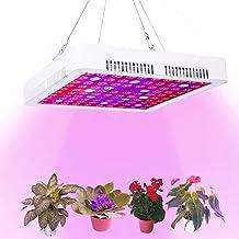 Calistouk 300W LED Grow Light Full Spectrum para Plantas de Invernadero hidropónicas de Interior Veg and Bloom 100pcs 3W LED (300W)