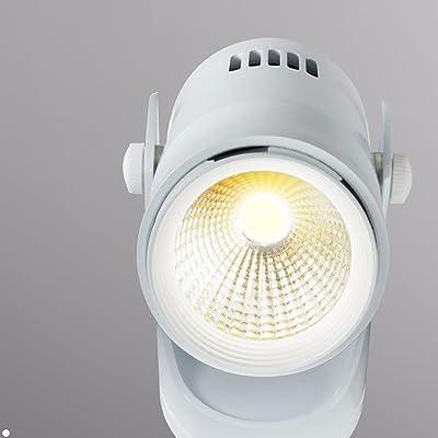 Ms-62131 5W LED de luz de punto ajustable de la direccion de la luz de