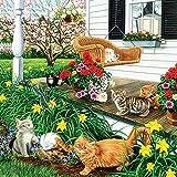 ZHONGYU 5D DIY Diamond Painting Animal Cats Diamond Mosaic Full Set Rhinestones Pictures Diamond Embroidery Icons Farmhouse Decor(40 * 50CM)