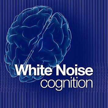 White Noise: Cognition