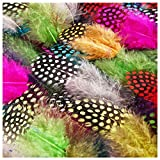 TommoT 200Pcs 10 Colors 6-13 cm Colorful Spotted Feathers for Jewelry,Clothing Decoration,DIY,Party Dress-ups and Dream Catcher Crafts