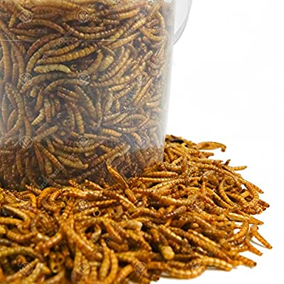 GardenersDream Dried Mealworms Mix Wild Bird Food Large Variety from GardenersDream