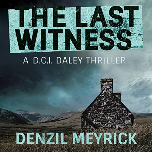 The Last Witness audiobook cover art