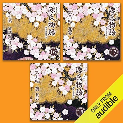 『源氏物語 瀬戸内寂聴 訳 3本セット(六)』のカバーアート