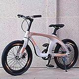 WN-PZF Bicicleta de 20 Pulgadas de una Velocidad, Deportes al Aire Libre para Estudiantes Adultos, Material de aleación de magnesio + Frenos de Disco Doble + neumáticos a Prueba de explosiones,Oro