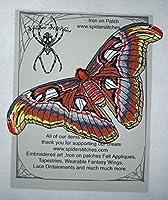 エピックライフサイズ アトラス蛾 アタカス アトラス 蛇頭 蛾 バタフライ アイロン接着 アップリケ