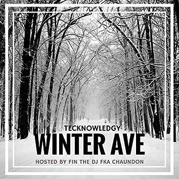 Winter Ave (Instrumental Tape)