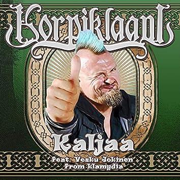 Kaljaa (feat. Vesku Jokinen)