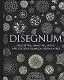 Disegnum. Prospettiva, simmetria, curve, arte celtica e islamica, sezione aurea