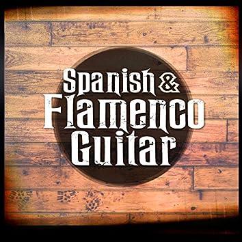 Spanish & Flamenco Guitar